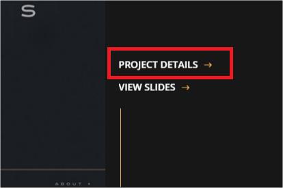 fusion-portfolio-project-detail